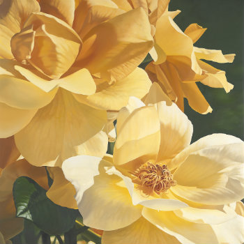 Golden October - Giclee print