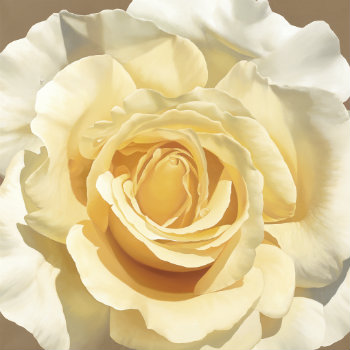 Golden Rose - Giclee print