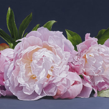 Oil painting - Still Life with Peonies