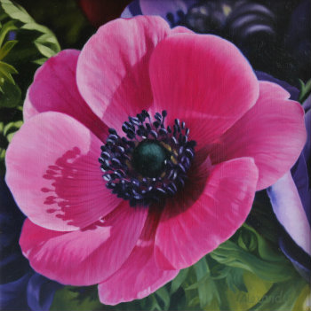 Oil painting - Pink Anemone